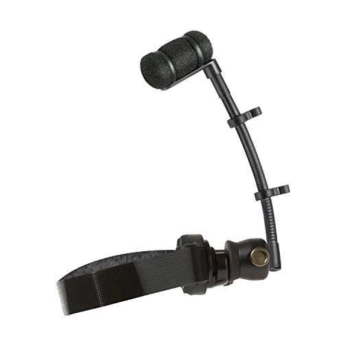 Audio-Technica Woodwind Mount