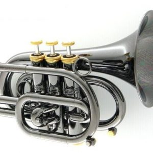 "CAROL BRASS CPT-3000-GLS-Bb-BG ""BlackHawk"" Pocket Trumpet"