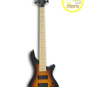 5 String Electric Bass, Bolt-On Maple Neck & Fingerboard