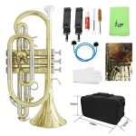 ammoon Bb Flat Cornet Brass Instrument with Carrying Case Gloves Cleaning Cloth Grease Brushes 3