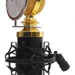 Rockville RCM02 Pro Studio Recording Condenser Microphone Mic+Metal Shock Mount 2
