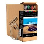 D'Addario EJ16 Phosphor Bronze Acoustic Guitar Strings, Light (25 Pack) – Corrosion-Resistant Phosphor Bronze, Offers a Warm, Bright and Well-Balanced Acoustic Tone and Comfortable Playability