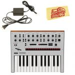 Korg Monologue Monophonic Analog Synthesizer – Silver Bundle with Power Supply and Austin Bazaar Polishing Cloth