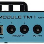 Roland Dual Input Trigger Module with WAV Manager Application (TM-1) 1
