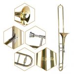 Apelila Gold Bb Tenor Trombone, Tuner, with Hard Case Mouthpiece Cleaning Kit & Care Kit Standard Student Beginner Brass Trombone 1