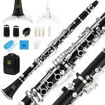 Eastar B Flat Clarinet Wind Band ECL-400 Commander Ebonite Silver Keys with Hard Case, 4C Special Practice Mouthpiece 1