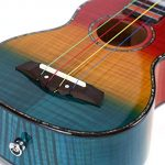 Balnna Soprano Ukulele Maple 21 inch Traditional High-gloss Rainbow Learn to Play,Color String with Soft Case Gig Bag 1