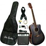 Glen Burton Acoustic Electric Cutaway Guitar