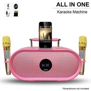 RHM Karaoke Machine for Kids&Adult,2 Wireless Microphones