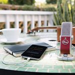 Blue Raspberry Premium Mobile USB Microphone (0304) 2