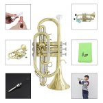ammoon Bb Flat Cornet Brass Instrument with Carrying Case Gloves Cleaning Cloth Grease Brushes 2