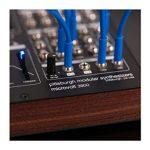 Pittsburgh Modular Microvolt 3900 Semi-modular Analog Synthesizer 2