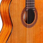 Cordoba Dolce 7/8 Size Acoustic Nylon String Classical Guitar 3