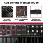 Akai Professional MPK Mini MKII LE Black | Black, Limited Edition 25 Key Portable USB MIDI Keyboard With 8 Backlit Performance Ready Pads, 8 Assignable Q Link Knobs & A 4 Way Thumbstick 2