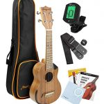 Martin Smith Concert Ukulele Starter Kit with Aquila Strings