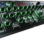 Roland Plug-Out Synthesizer Module (SYSTEM-1M) 1