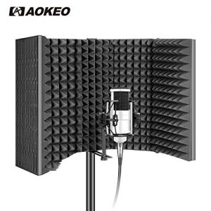 Aokeo AO-Professional Studio Recording Microphone Isolation Shield