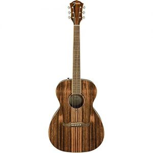 Fender Striped Ebony Acoustic Guitar - Limited Edition