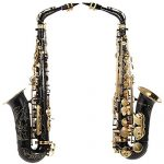 ammoon bE Alto Saxphone Brass Lacquered Gold E Flat Sax 82Z Key Type Woodwind Instrument with Cleaning Brush Cloth Gloves Cork Grease Strap Padded Case 2