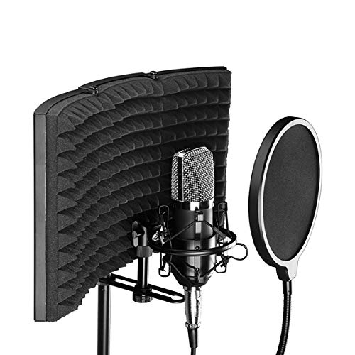 Professional Microphone Isolation Shield, Pop Filter