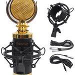 Rockville RCM02 Pro Studio Recording Condenser Microphone Mic+Shock Mount+Shield 1