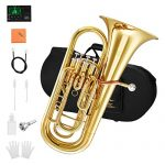 Eastar Student Bb Euphonium B Flat Gold Lacquer 4-Key Piston Valve Brass with Tuner Hard Case Euphonium Mouthpiece Gloves Valve Oil Cleaning Kit, EEU-380