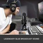 BLUE Condenser Microphone, Blackout, Mic Only (988-000100) 1
