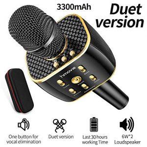 3300mAh Dual Sing Duet Version Wireless Karaoke Microphone