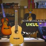Fret Zealot LED Ukulele Learning Accessory – EASIEST and BEST Method to Learn To Play a Ukulele for All Levels, Fits CONCERT size ukuleles, IOS & Android App included 1