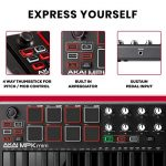 Akai Professional MPK Mini MKII LE Black | Black, Limited Edition 25 Key Portable USB MIDI Keyboard With 8 Backlit Performance Ready Pads, 8 Assignable Q Link Knobs & A 4 Way Thumbstick 1