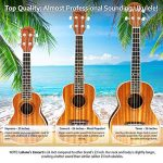Ukulele Concert Size Bundle From Lohanu (LU-C) 2 Strap Pins Installed FREE Uke Strap Case Tuner Picks Hanger Aquila Strings Installed Free Video Lessons BEST UKULELE BUNDLE DEAL Purchase Today! 2