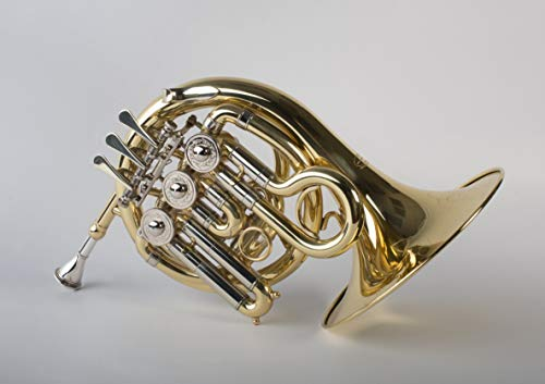 Tempest Agility Winds Mini Pocket French Horn in Bb 3 Rotary Valves Engraved Lacquered Brass with Case and Mouthpiece 5-Year Warranty
