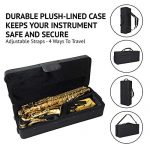 LyxJam Alto Saxophone – E Flat Brass Sax Beginners Kit, Mouthpiece, Neck Strap, Cleaning Cloth Rod, Gloves, Cork Grease, Hard Carrying Case w/ Removable Straps, Maintenance Guide – 10 BONUS Reeds (C 1