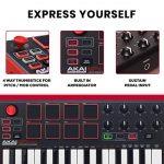 Akai Professional MPK Mini MKII | 25 Key Portable USB MIDI Keyboard With 8 Backlit Performance Ready Pads, 8 Assignable Q Link Knobs & A 4 Way Thumbstick 2