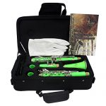 Clarinet,Soprano,17 Key bB Flat,ABS Binocular Clarinet with Cleaning Cloth Gloves 10 Reeds Screwdriver Reed Case Woodwind Instrument (Green) 3