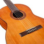 Cordoba Dolce 7/8 Size Acoustic Nylon String Classical Guitar 2