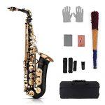 Muslady Eb Alto Saxophone Sax Brass Lacquered Gold