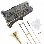 Apelila Gold Bb Tenor Trombone, Tuner, with Hard Case Mouthpiece Cleaning Kit & Care Kit Standard Student Beginner Brass Trombone 2