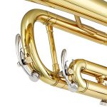 Eking Standard Student Trumpet Brass Gold Bb Trumpet Beginner with Hard Case Gloves Cloth 7C Mouthpiece and Valve Oil, KTR-400 3