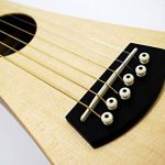 Martin Steel String Backpacker Travel Guitar Bundle with Gig Bag, Strap, Strings, Tuner, Picks, Austin Bazaar Instructional DVD, and Polishing Cloth 3