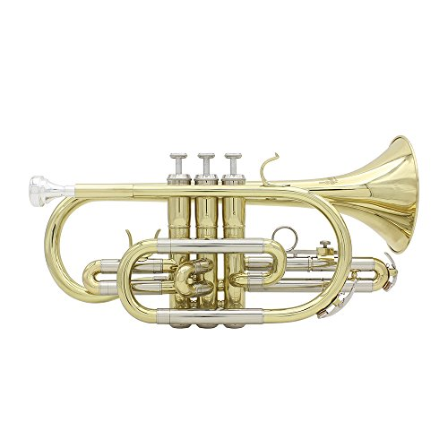 ammoon Bb Flat Cornet Brass Instrument with Carrying Case Gloves Cleaning Cloth Grease Brushes