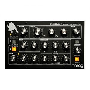 Moog Minitaur Bass Synthesizer
