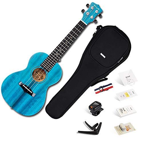Enya Concert Ukulele 23 Inch Blue Solid Mahogany Top with Ukulele Starter Kit