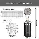 ZINGYOU BM-8000 Professional Studio Condenser Microphone Set, XLR Condenser Mic Bundle for Recording (Black) 2
