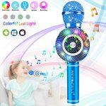 weird tails Wireless Karaoke Microphone, Handheld Bluetooth Microphone