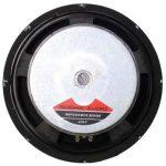 Seismic Audio – Jolt-10 – Pair of 10″ Bass Guitar Raw Woofer Speaker Drivers PRO Audio Replacement 2