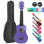 High Gloss Soprano Basswood Ukulele 21inch Starter Kit for Beginner