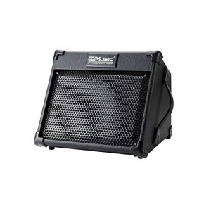 Acoustic Guitar Amplifier, 40 Watt Portable Rechargeable Amp for Guitar Acoustic