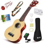Soprano Ukulele Beginner Kit – 21 Inch w/How to play Songbook Carrying bag Digital Tuner All in One Set