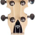 Gold Tone Little Gem Ukes 4-String Ukulele Right, Blue LG-S 2